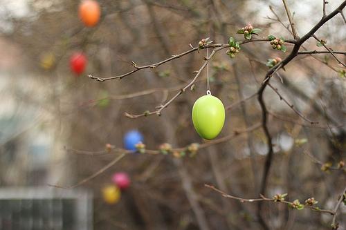 Easter by Rego Korosi