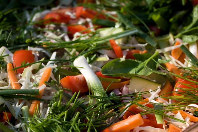 Vegetables by Mike Haller