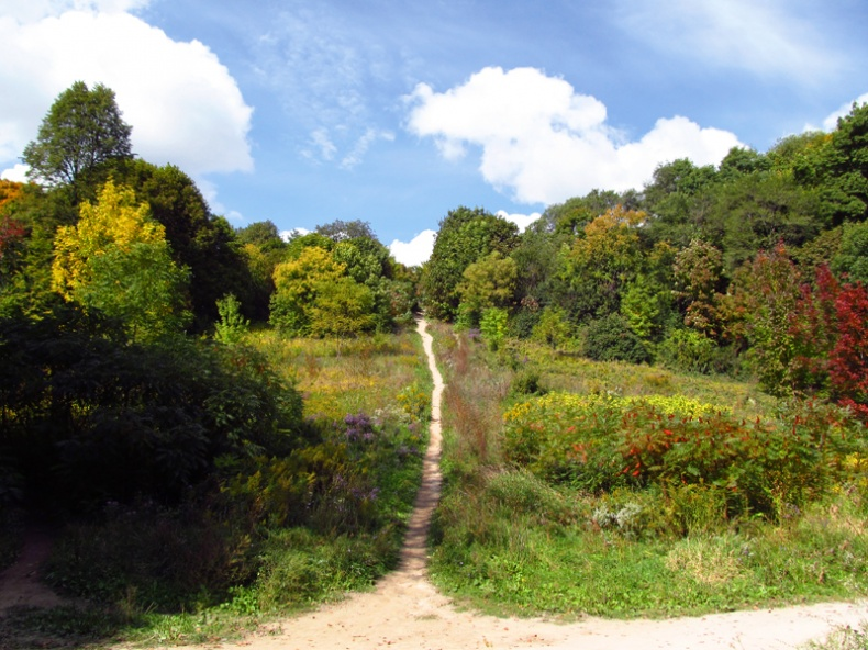 an offshoot of the beltline trail near the Evergreen Brickworks