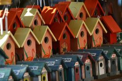 Bird-Houses-by-Andrew-Osterberg