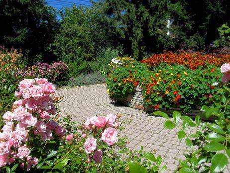 rosetta gardens 10