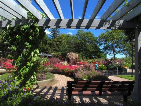 rosetta gardens 12
