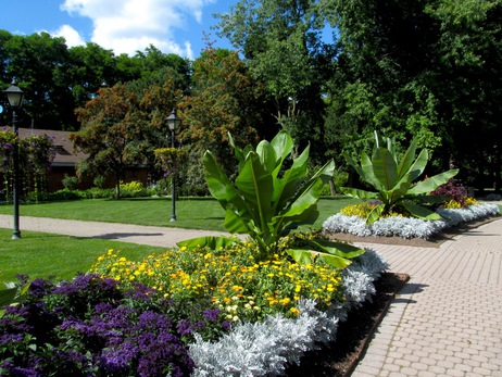 rosetta gardens 16