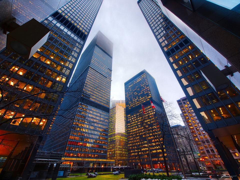 Skyscraper And Cows In Toronto