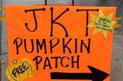 JKT Pumpkin Patch 2013 139