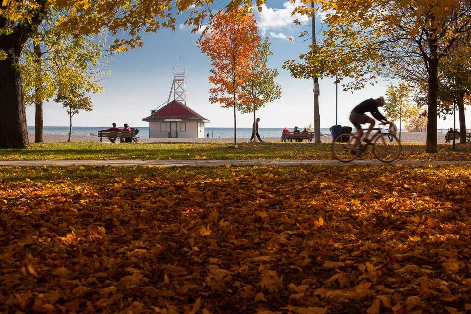 Toronto Beaches Real Estate