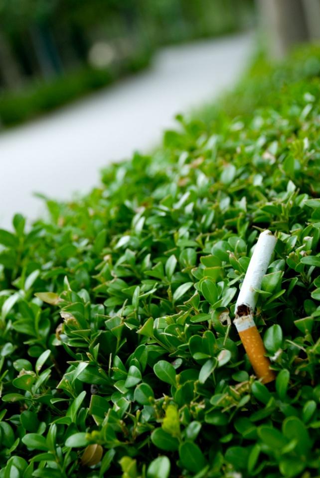 No Smoking by risingsunset7890
