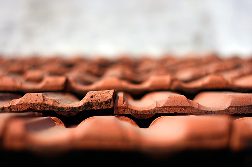 The Roof Tiles by Dilip Muralidaran