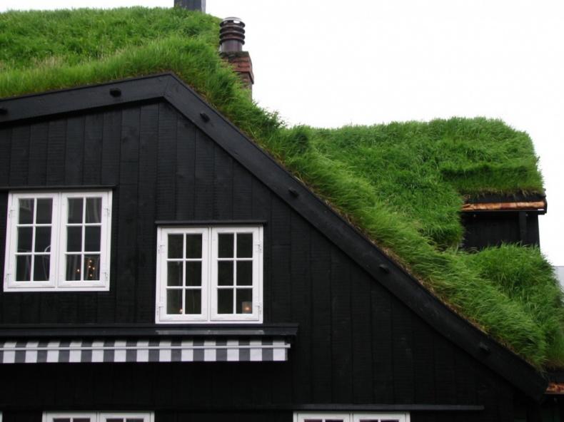 Grass Roof by Julia Velkova