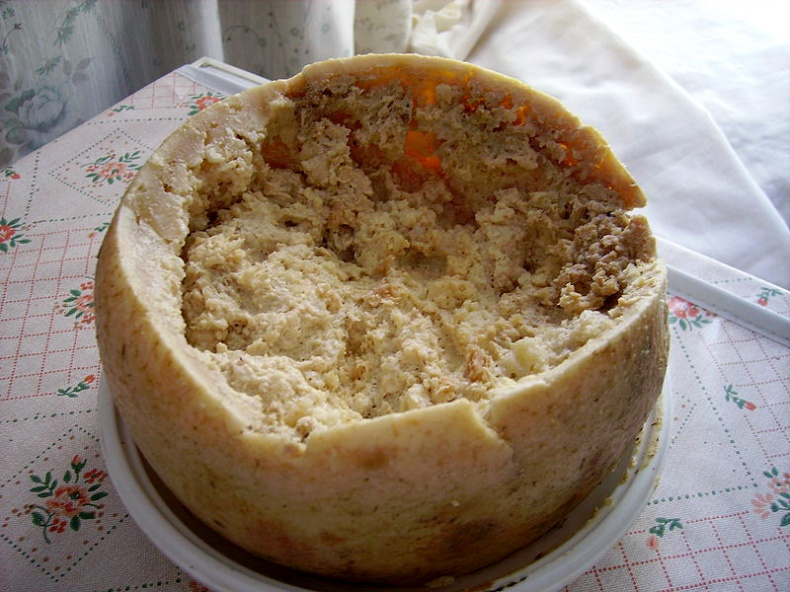 Casu Marzu cheese by Wikimedia Commons