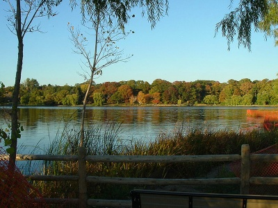 Grenadier Pond by Wikimedia Commons