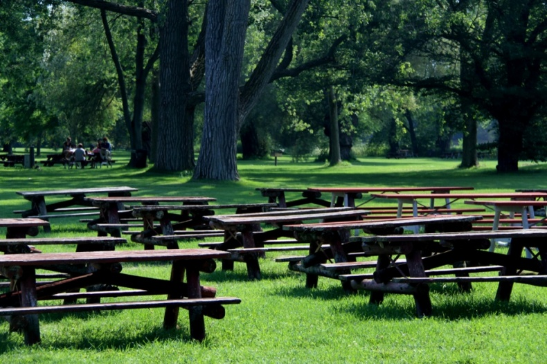 Picnic Points in Hanlans Park