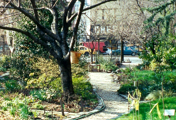 The first community garden