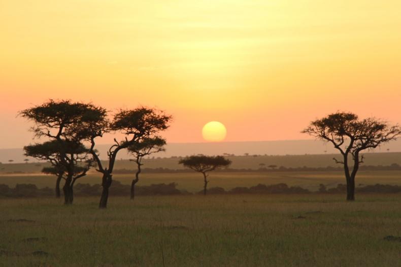 10 Masai Mara Day 2 Safari B 2321 copy