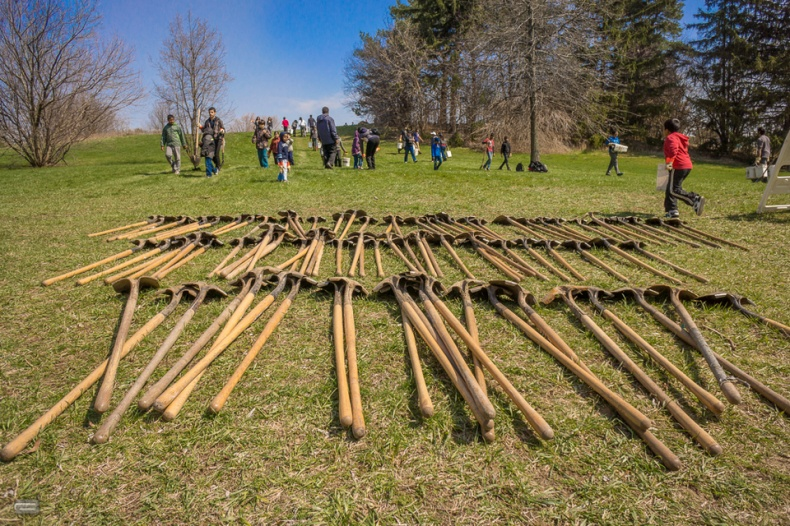 Shovels ready for Trees Across Toronto