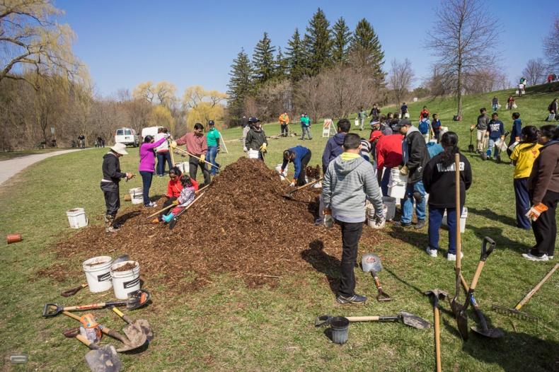 Volunteers of Trees Across Toronto