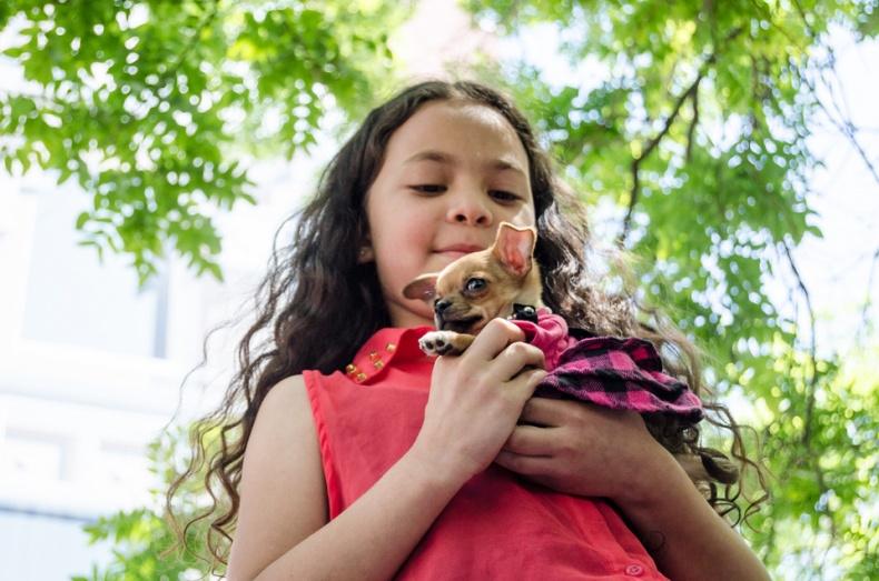 Girl holding a small chiuaua
