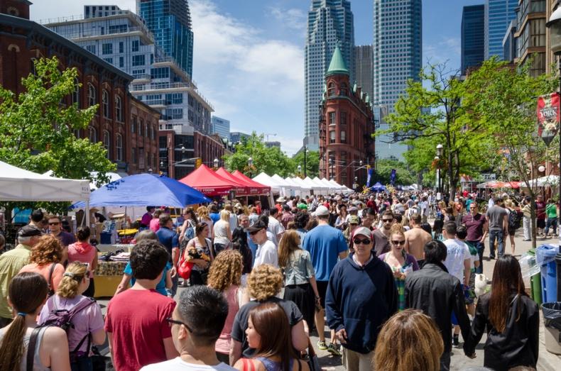 Woofstock 2013 in Toronto