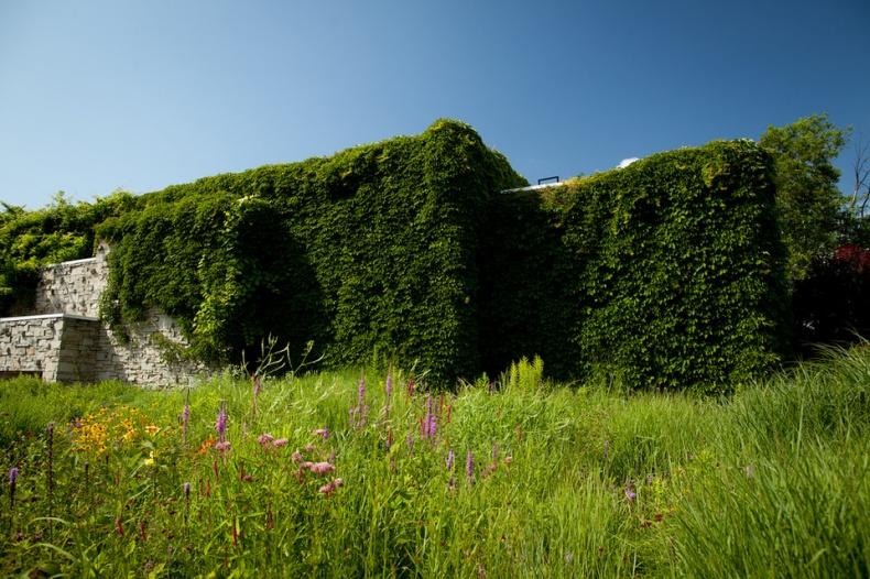 Green Facade Toronto Botanical Garden