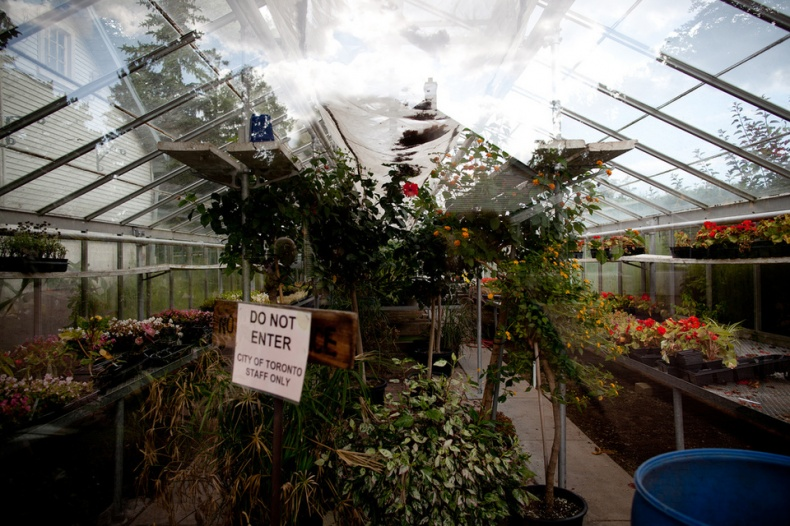 Greenhouse of Toronto Botanical Garden