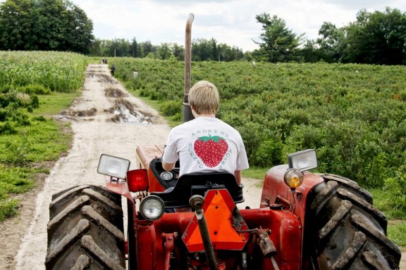 Andrews Scenic Acres Farm Strawberry Tractor