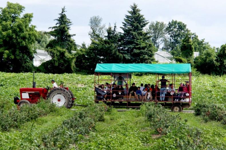 Andrews Scenic Acres Farm Tours