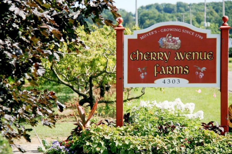 Welcome To The Cherry Avenue Farms