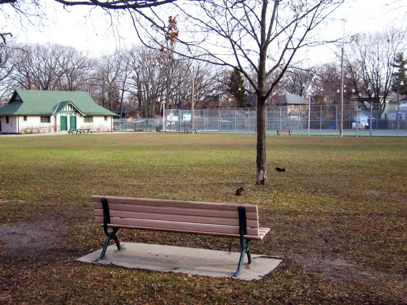 Moore Park - The Park