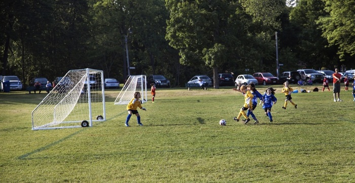 Local leagues compete on the fields of High Park