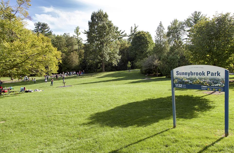 Best Off-Leash Dog Parks in Toronto