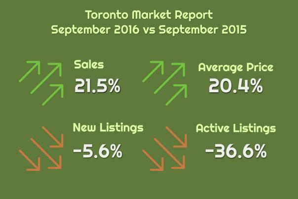market-report-rest