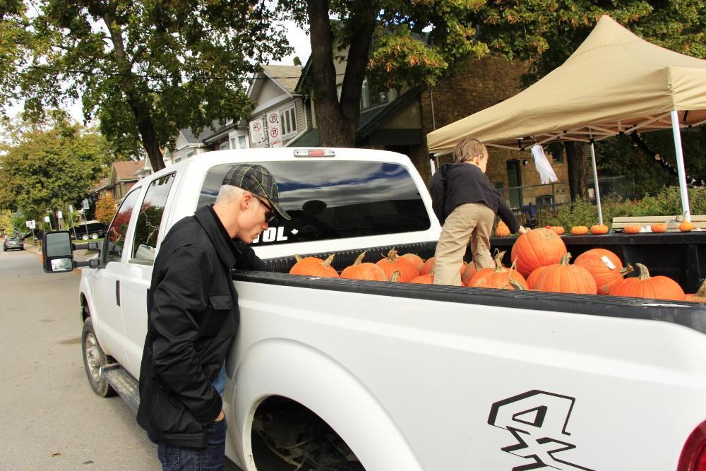 pumpkin-patch-2016_8952