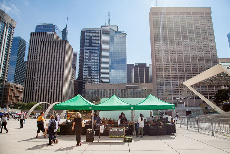 OFFMA at Nathan Phillips Square