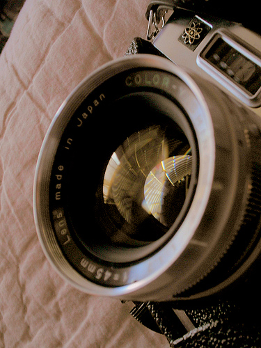camera by Crystal Marie Lopez