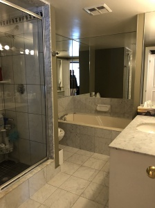 1 palace pier court bathroom