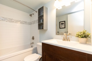 100 quebec avenue #1101 19 bathroom
