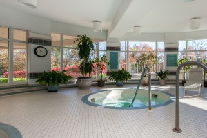 18 concorde place pool 2