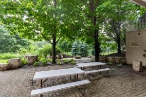 50 eglinton avenue west garden 1