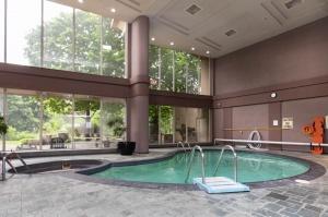 50 eglinton avenue west pool 2