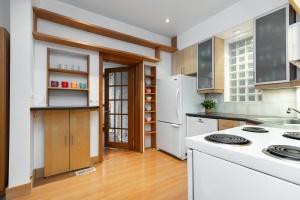 104 marion street kitchen 02