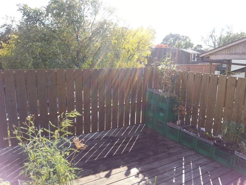 garden client2