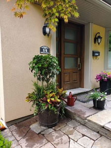 14 willard gardens exterior (1)