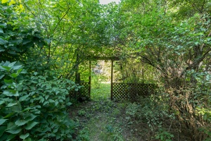 15 hewitt avenue backyard 03