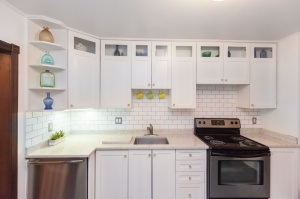 170 Cowan Avenue Kitchen 2