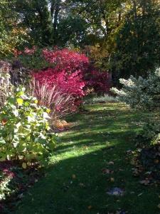 4. south garden