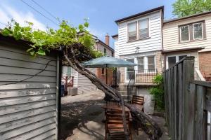 25 glebeholme boulevard backyard 4