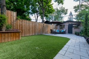 301 evelyn avenue backyard 2