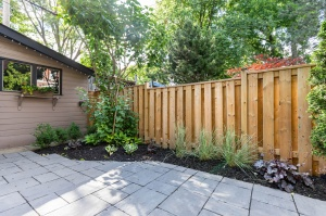 301 evelyn avenue landscaping