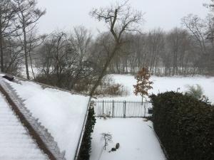 43 bralorne crescent winter