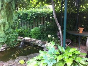 garden15
